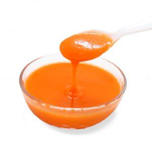 乳酸発酵野菜 にんじんピューレ ロアレ乳酸菌