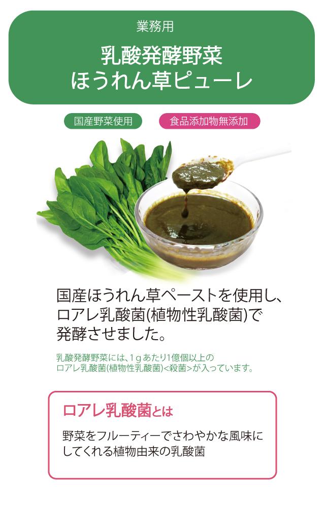 業務用 乳酸発酵野菜 ほうれん草