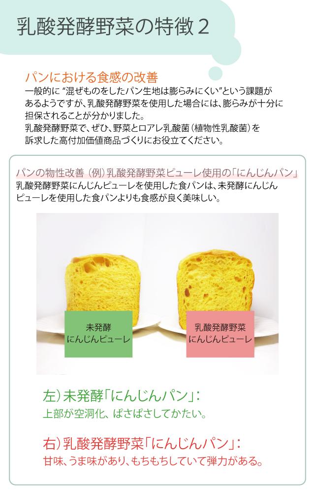 業務用 乳酸発酵野菜