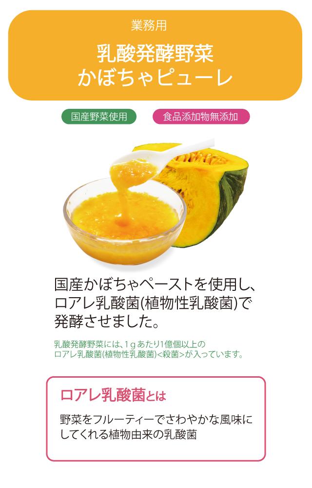 業務用 乳酸発酵野菜 かぼちゃ