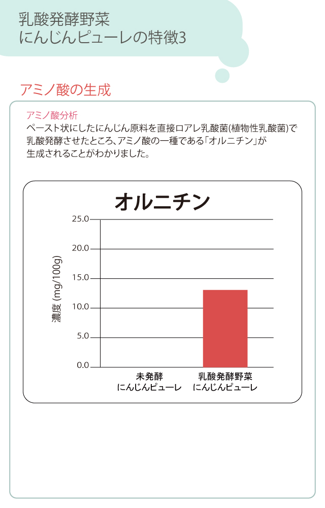 業務用 乳酸発酵野菜 にんじん ピューレ