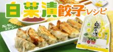 白菜漬 アレンジ餃子